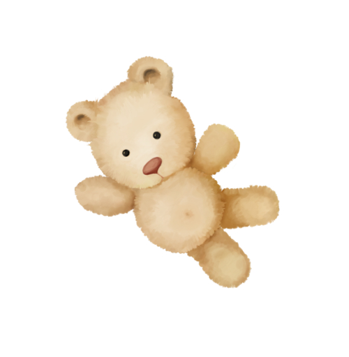Bear - PNG image with transparent background